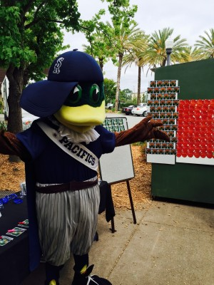 Drake No Litter in Baseball